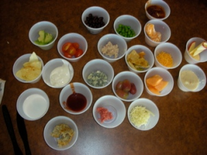 Free Science Project food samples